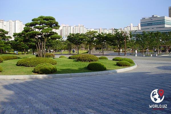 Janubiy Koreyada o`qish