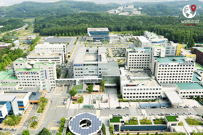 Chonbuk National University | Study in South Korea | Education in Korea